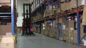 Chariot élévateur d'ordre de laps de temps dans l'entrepôt clips vidéos
