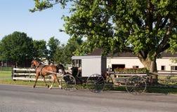 Chariot amish de chariot et de fleur Photographie stock libre de droits