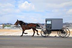 Chariot amish en hiver photo libre de droits