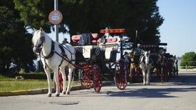 Chariot andalou Sanlucar de cheval photo libre de droits