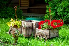 Chariot avec des fleurs Photo libre de droits