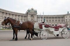 Chariot blanc près du château Hofburg images libres de droits