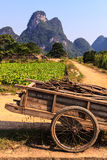 Chariot with branches in a limestone valley landscape Royalty Free Stock Image