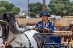 Chariot conduisant la concurrence Photo libre de droits