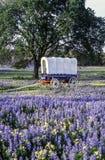 Chariot couvert dans le Texas photo stock
