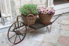 Chariot décoratif avec des paniers et des fleurs sur la rue photo libre de droits
