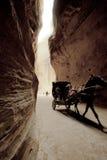 Chariot d'âne dans PETRA Photos stock