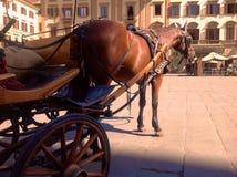 Chariot dans Florenze Photographie stock