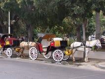 Chariot dans Viña Del Mar chile Images libres de droits