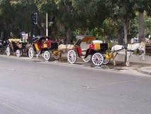 Chariot dans Viña Del Mar chile Photo libre de droits