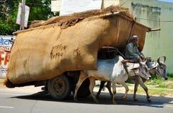 Chariot de boeuf indien Photo libre de droits