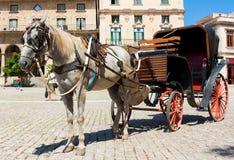 Chariot de cheval à vieille La Havane Images stock