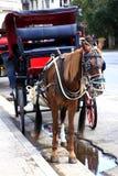Chariot de cheval à vieille La Havane photo stock