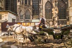 Chariot de cheval à Vienne photos libres de droits