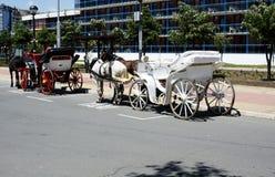Chariot de cheval Photographie stock