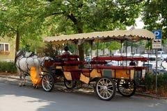 Chariot de cheval Images libres de droits