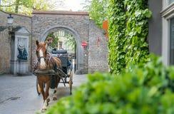 Chariot de cheval avec des touristes sur une rue à Bruges Photo libre de droits