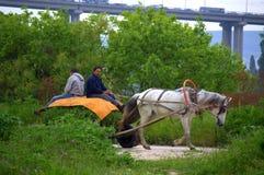 Chariot de cheval d'équitation d'agriculteurs Images libres de droits
