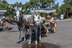Chariot de cheval dans Istambul Photos libres de droits