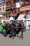 Chariot de cheval dans la vieille ville de Marrakech Photographie stock libre de droits