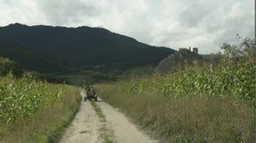 Chariot de cheval dans Rimetea Photos stock
