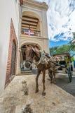 Chariot de cheval en Santo Domingo, République Dominicaine  Photos stock