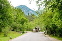 Chariot de cheval sur une route dans la terre Images libres de droits