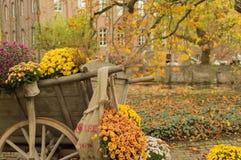 Chariot de fleur dans Arcen, Pays-Bas Photos stock