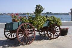 Chariot de fleur - San Diego Images stock