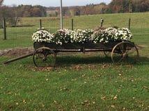 Chariot de pays avec des fleurs Image libre de droits