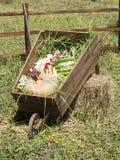 Chariot de village Photo libre de droits