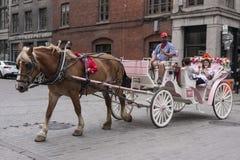 Chariot hippomobile à Montréal, Québec Images libres de droits