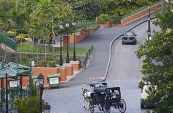 Chariot hippomobile à San Juan Photos stock