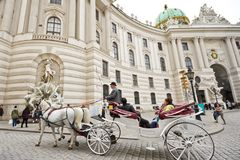 Chariot hippomobile à Vienne images stock