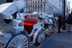 Chariot hippomobile - cercle de Columbus, NYC Images stock