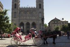 Chariot hippomobile rose à Montréal sur des d'Armes d'endroit Image stock