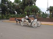 Chariot hispanique Image libre de droits