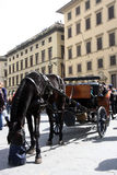 Chariot in the historical center of Florence Royalty Free Stock Image