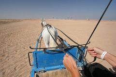 Chariot ride Stock Photos