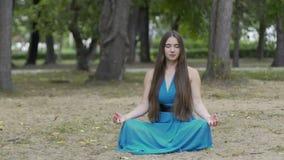 Chariot tiré de la femme méditante en parc, belle paix intérieure femelle aux cheveux longs clips vidéos