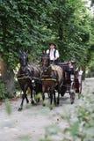 Chariot Vienne de cheval images libres de droits