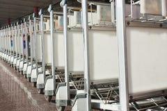 Chariots à bagages, aéroport international capital de Pékin Images stock