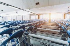 Chariots de bagage numérotés par multiple Photo libre de droits