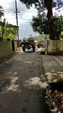 Chariots de Bullock sur Asphalt Road Junction au Kerala Photos libres de droits