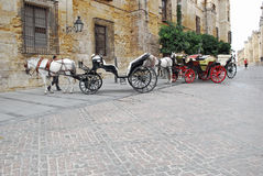 Chariots de cheval Images stock