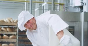 Charismatic smiling old baker chef closeup unloaded the flour in a bakery container to prepare the dough. 4k stock footage