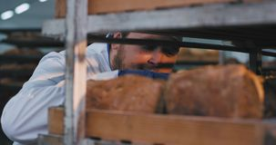 Charismatischer lustiger großer Bäcker in einer Uniform in einem Bäckereigenießen des frischen Geruchs des Brotes und etwas Brot  stock footage
