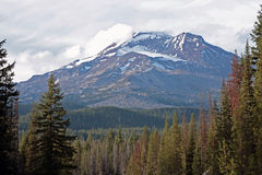 Charity in the Cascades. South Sister (Charity, 10,358 ft.) is one of many dormant stratovolcanoes in the Central Oregon Cascades.  This view from the south side Royalty Free Stock Photos