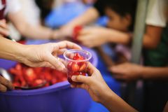 Charity food is the hope of the poor who have no money : concept of begging food : Donate food to people in society : Volunteers. Share Food to the Poor royalty free stock images
