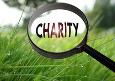 Charity. Magnifying glass with the word charity on grass background. Selective focus Royalty Free Stock Images